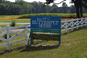 Wheeler Farms Butterfly House Family 4 Pack